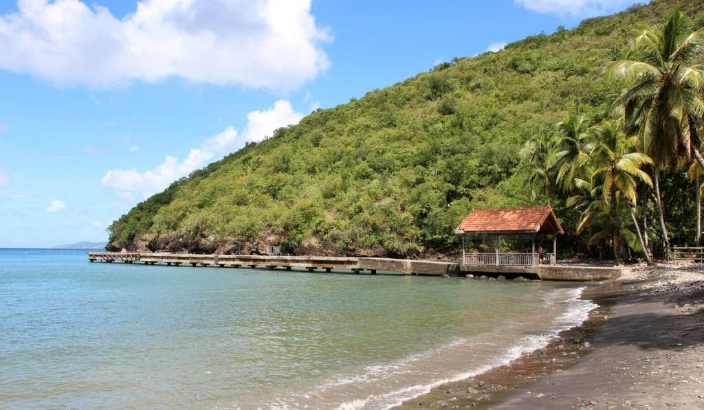 Anse noire, plus belle plage de Martinique